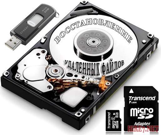 Raise Data Recovery for FAT / NTFS 5.3 Datecode 06.06.2012